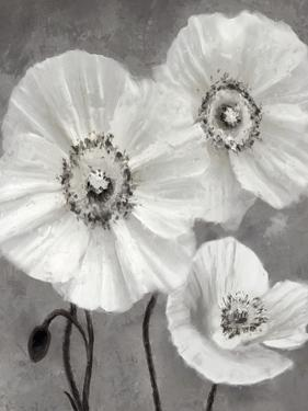 Floral Fade - Haze by Mark Chandon