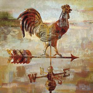 Long Barn - Weathervane by Mark Chandon