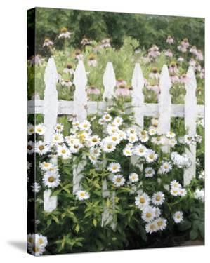 Picket Fence - Pretty by Mark Chandon