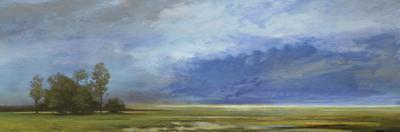 Roaming Skies by Mark Chandon