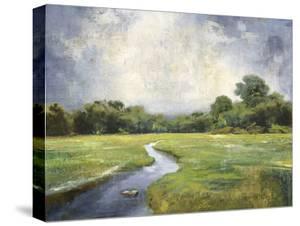Rural Meander - Calm by Mark Chandon