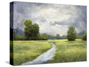 Rural Meander - Quiet by Mark Chandon