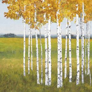 Tree Vista - Escape by Mark Chandon