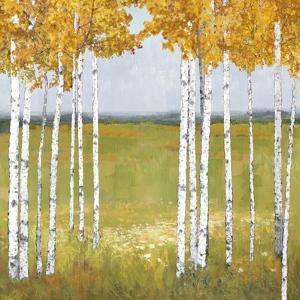 Tree Vista - Reflect by Mark Chandon