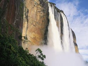Angel Falls, Cliffs and Trees by Mark Cosslett