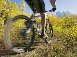 Cyclist Rides Mountain Bike Among Trees with Autumn Foliage by Mark Cosslett