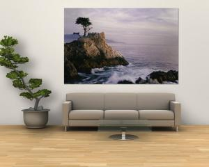 Lone Cypress Tree on a Rocky Point Near Pebble Beach by Mark Cosslett