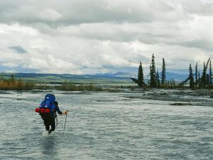 Man Carrying Backpack Crosses River in Denali National Park by Mark Cosslett