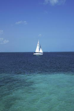 Sail Boat at at the Resort Town of Cancun on the Caribbean Coast of Quintana Roo on the Yucatan Pen by Mark D Callanan