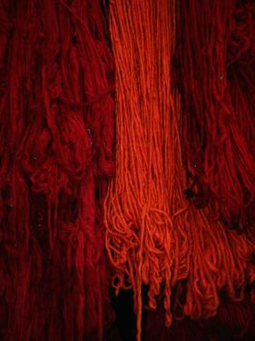 Dyed Wool at Souq, Marrakesh, Morocco by Mark Daffey