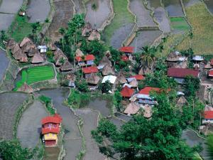 Overhead View of Village and Rice Terraces, Batad, Philippines by Mark Daffey