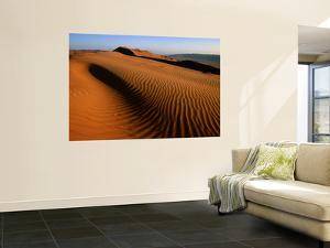 Wind-Sculpted Sand Dunes by Mark Daffey
