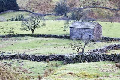 Field Barn and Dry Stone Walls in Garsdale