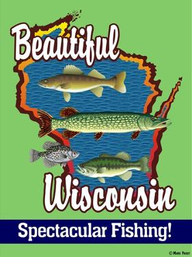 Beautiful Wisconsin by Mark Frost