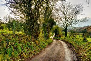 Going Home by Mark Gemmell