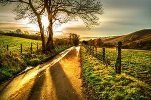 Golden Memories by Mark Gemmell