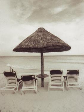 Palapa Umbrella on the Beach, Cancun, Mexico by Mark Gibson