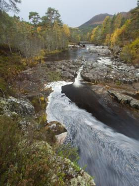 River Affric Flowing Through Silver Birch and Scots Pine Woodland in Autumn, Glen Affric, Scotland by Mark Hamblin