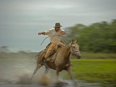 Traditional Pantanal Cowboys, Peao Pantaneiro, in Wetlands, Mato Grosso Do Sur Region, Brazil by Mark Hannaford