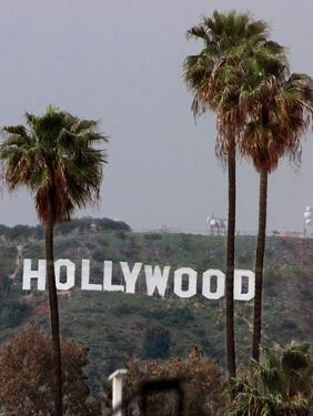 Hollywood Sign by Mark J. Terrill