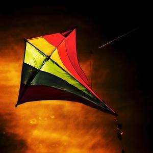 Kite by Mark James Gaylard