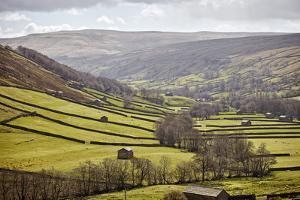 Swaledale, North Yorkshire, Yorkshire, England, United Kingdom, Europe by Mark Mawson