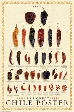 The Great Chile Poster (dried) by Mark Miller
