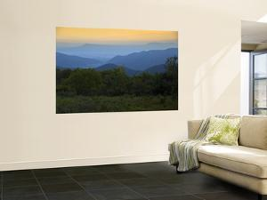Looking Out over Forest-Covered Mountains in Evening Light by Mark Newman