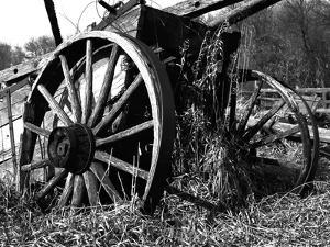 Wooden Wagon by Mark Polege