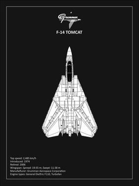 BP F-14-Tomcat Black by Mark Rogan
