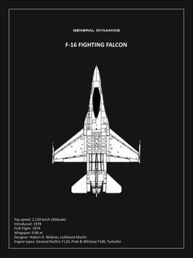 BP F-16 Fighting Falcon Black by Mark Rogan