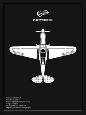 BP P-40 Warhawk Black by Mark Rogan