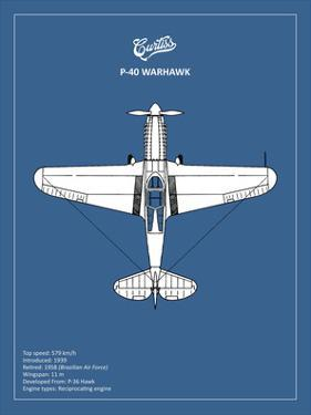 BP P-40 Warhawk by Mark Rogan