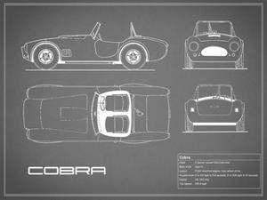 Cobra-Grey by Mark Rogan