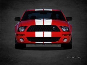 Ford Shelby GT500 by Mark Rogan