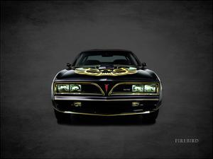 Pontiac FireBird TransAm 1978 by Mark Rogan