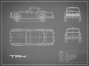 Triumph TR4-Grey by Mark Rogan