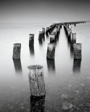 Dock Poles by Mark Scheffer
