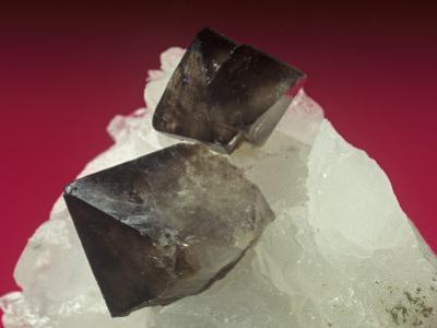 Scheelite Crystals on Quartz, China