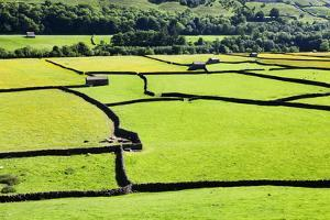 Barn and Dry Stone Walls in Meadows at Gunnerside by Mark Sunderland