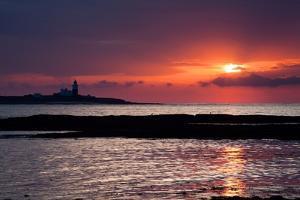 Coquet Island Sunrise by Mark Sunderland