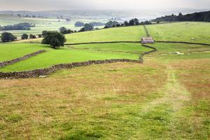 Footpath over Meadows in Crummack Dale, Yorkshire, England, United Kingdom, Europe by Mark Sunderland