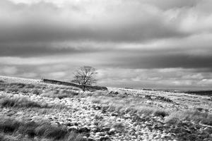 North England Landscape by Mark Sunderland