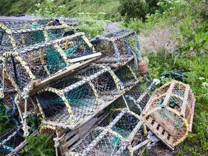 Old Lobster Pots at Catterline, Aberdeenshire, Scotland, United Kingdom, Europe by Mark Sunderland