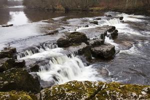 Redmire Force on the River Ure by Mark Sunderland