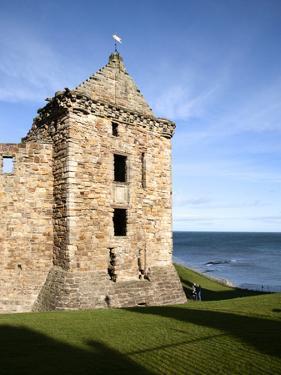 St Andrews Castle, St Andrews, Fife, Scotland by Mark Sunderland