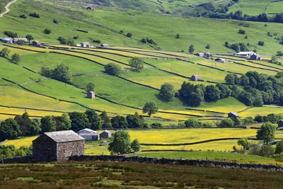 Swaledale in Summer from Askrigg High Road Near Muker