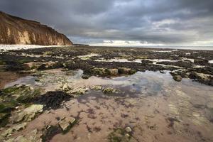 Toward Flamborough Head from Sewerby Rocks, Bridlington, East Riding of Yorkshire, England, UK by Mark Sunderland