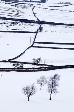 Winter Fields Near Burnsall, Yorkshire, England, United Kingdom, Europe by Mark Sunderland