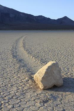 Sliding Stone or Moving Rock of Racetrack Playa, Death Valley, California, USA by Mark Taylor